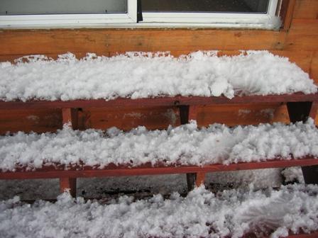 steps after hail.JPG